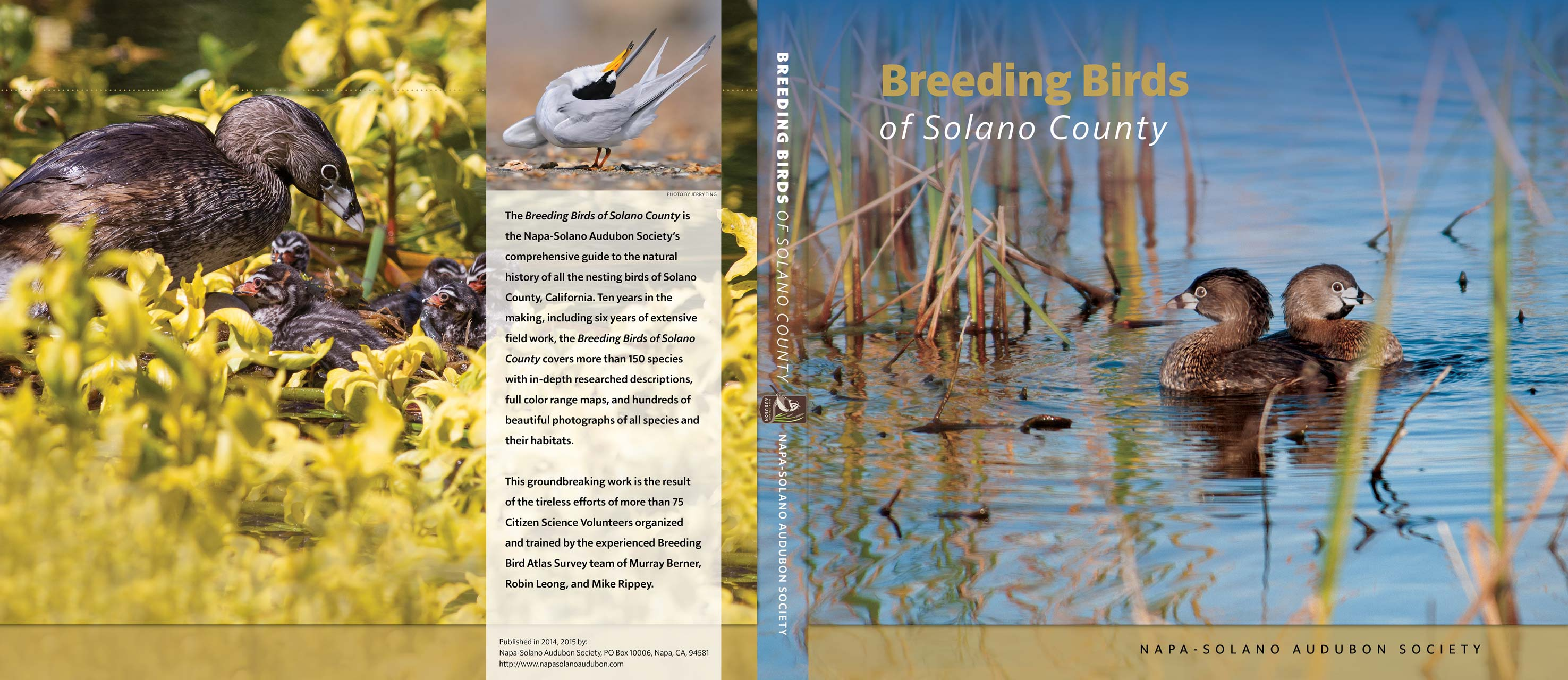 Breeding Birds Book Dust Cover